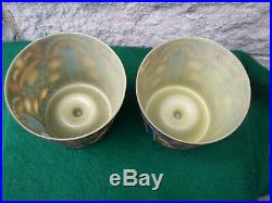 2 Rare Beautiful Antique Glass 1920s or1930s Lamp Shades Art Deco