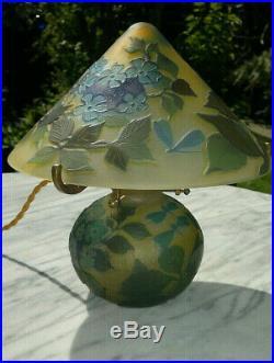Vintage French Art Nouveau Cameo Art Glass Acid Etched Table Lamp Light